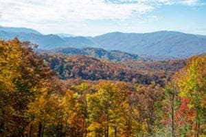 Breathtaking views of the fall foliage in the mountains from the Roaring Fork Motor Nature Trail.