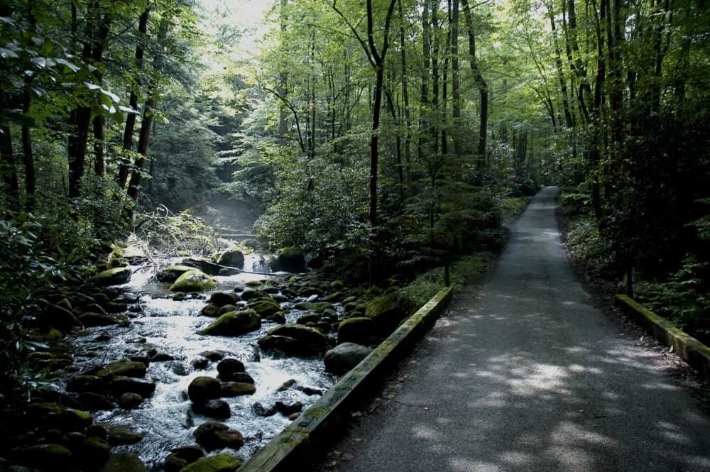 roaring fork motor trail in the smoky mountains