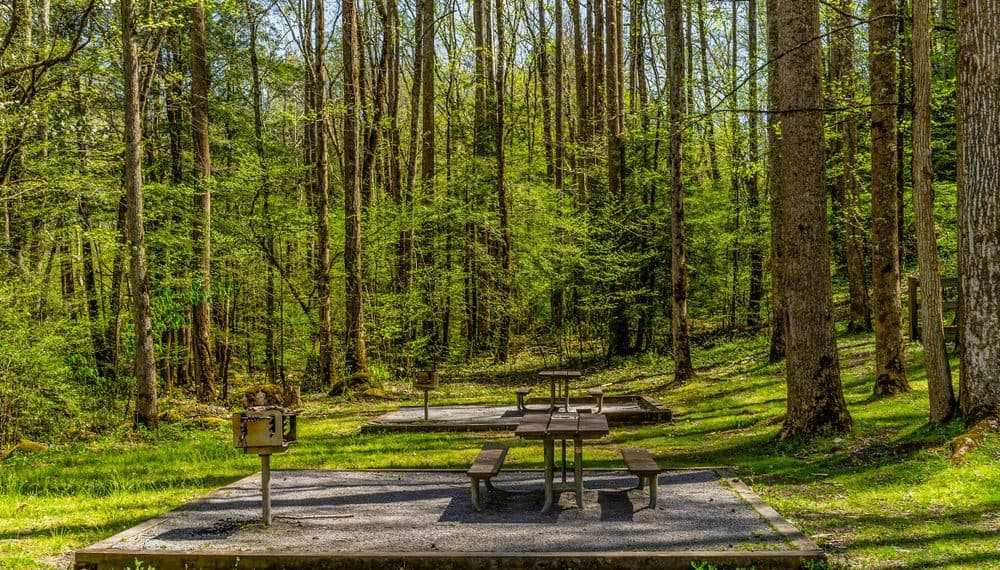 picnic table in the smoky mountains
